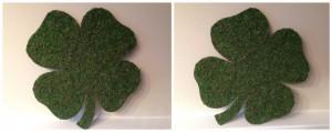 moss covered shamrocks