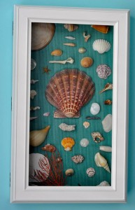 Beach boy nursery Shell
